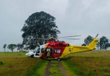 Cessnock horse-riding accident